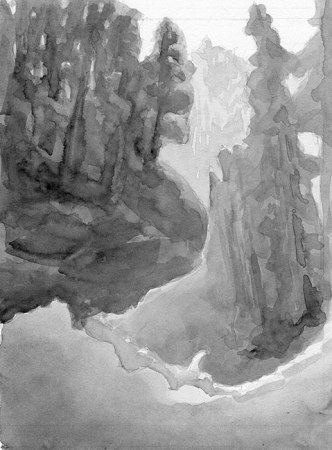 Tall Trees watercolor sketch